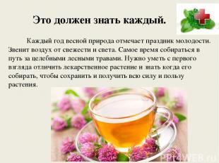 Это должен знать каждый. Каждый год весной природа отмечает праздник молодости.