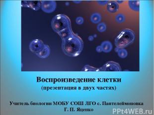 Воспроизведение клетки (презентация в двух частях) Учитель биологии МОБУ СОШ ЛГО