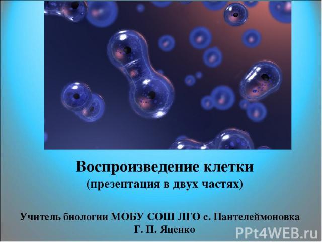 Воспроизведение клетки (презентация в двух частях) Учитель биологии МОБУ СОШ ЛГО с. Пантелеймоновка Г. П. Яценко