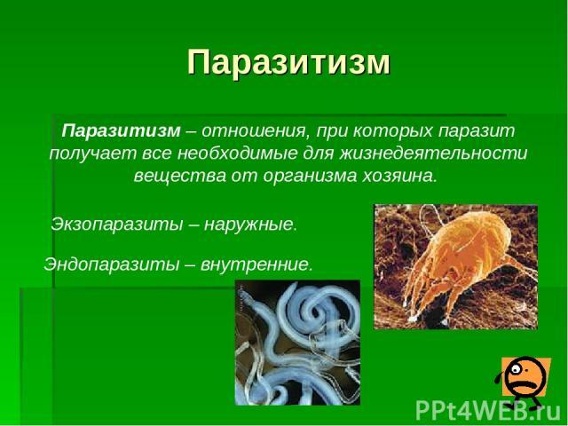 Паразитизм Паразитизм – отношения, при которых паразит получает все необходимые для жизнедеятельности вещества от организма хозяина. Экзопаразиты – наружные. Эндопаразиты – внутренние.
