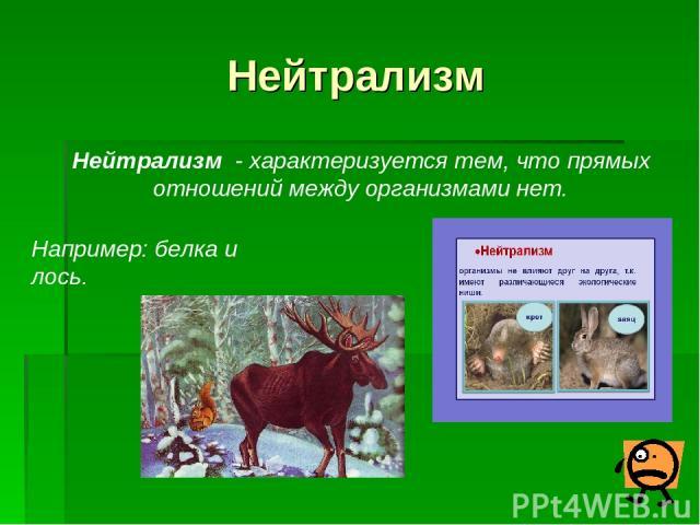Нейтрализм Нейтрализм - характеризуется тем, что прямых отношений между организмами нет. Например: белка и лось.