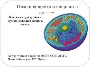 Обмен веществ и энергии в клетке. Автор: учитель биологии МОБУ СОШ ЛГО с. Пантел
