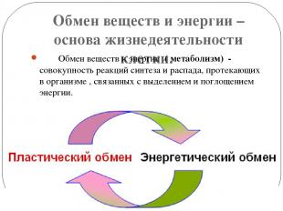 Обмен веществ и энергии – основа жизнедеятельности клетки. Обмен веществ и энерг