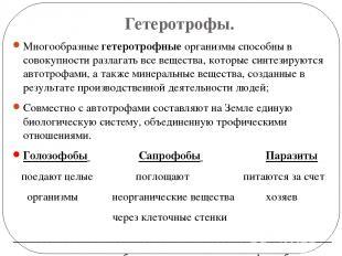 Гетеротрофы. Многообразные гетеротрофные организмы способны в совокупности разла