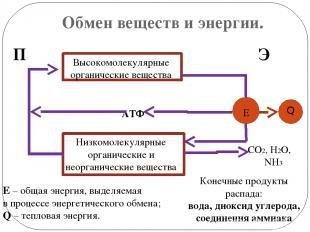 Обмен веществ и энергии. П Э АТФ Высокомолекулярные органические вещества н Низк