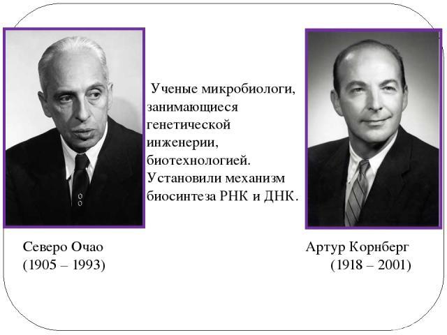 Артур Корнберг (1918 – 2001) Северо Очао (1905 – 1993) Ученые микробиологи, занимающиеся генетической инженерии, биотехнологией. Установили механизм биосинтеза РНК и ДНК.
