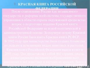 После становления России как независимого государства и реформы всей системы гос