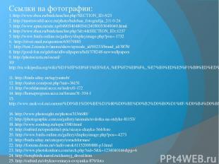 Ссылки на фотографии: 1. http://www.rbcu.ru/birdclass/list.php?SECTION_ID=923 2.