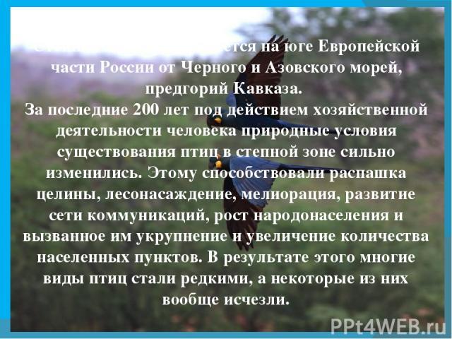 Степная зона протягивается на юге Европейской части России от Черного иАзовскогоморей, предгорий Кавказа. За последние 200 лет под действием хозяйственной деятельности человека природные условия существования птиц в степной зоне сильно изменились.…