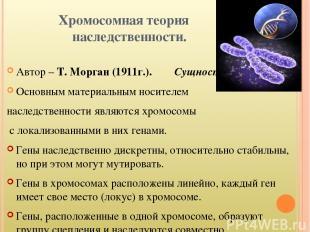 Хромосомная теория наследственности. Автор – Т. Морган (1911г.). Сущность: Основ