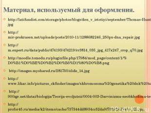 Материал, используемый для оформления. http://latifundist.com/storage/photos/blo