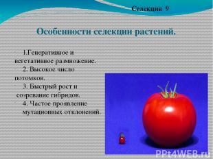 Особенности селекции растений. Селекция 9 1.Генеративное и вегетативное размноже