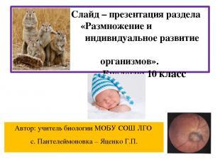 Слайд – презентация раздела «Размножение и индивидуальное развитие организмов».
