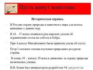 Историческая справка. В России охране природы и животного мира уделялось внимани