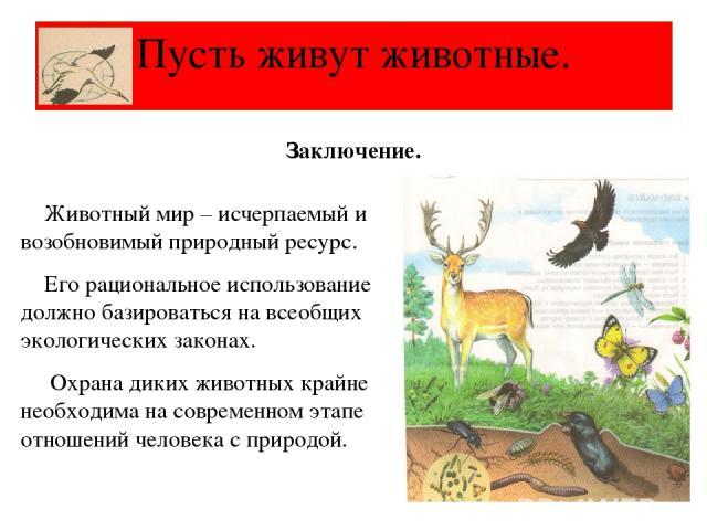 Животный мир – исчерпаемый и возобновимый природный ресурс. Его рациональное использование должно базироваться на всеобщих экологических законах. Охрана диких животных крайне необходима на современном этапе отношений человека с природой. Пусть живут…
