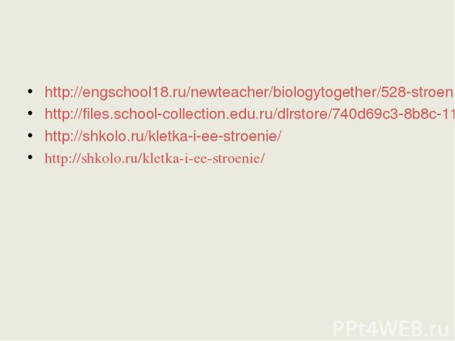 http://engschool18.ru/newteacher/biologytogether/528-stroenie-rastitelnoj-kletki-k-uroku-biologii6.html http://files.school-collection.edu.ru/dlrstore/740d69c3-8b8c-11db-b606-0800200c9a66/index.htm http://shkolo.ru/kletka-i-ee-stroenie/ http://shkol…