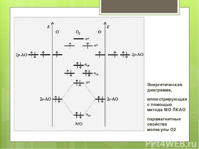 Энергетическая диаграмма, иллюстрирующая с помощью метода МО ЛКАО парамагнитные свойства молекулы O2