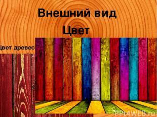 Внешний вид Цвет Цвет древесина получает за счет наличия в ней различной концент