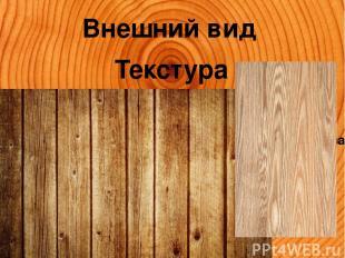 Внешний вид Текстура Текстура — называется рисунок, видимый на разрезах древеси