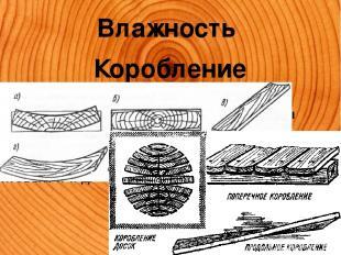 Влажность Коробление Изменение геометрических размеров и формы пиломатериалов по