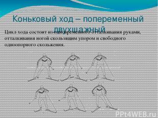 Коньковый ход – попеременный двухшажный Цикл хода состоит из одновременного отта