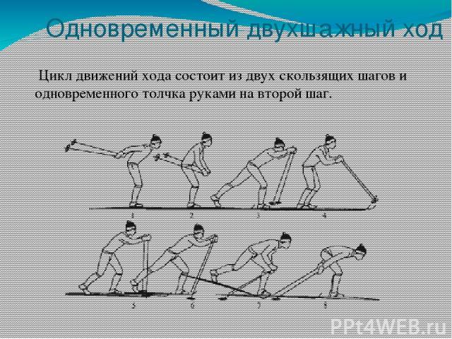 Одновременный двухшажный ход Цикл движений хода состоит из двух скользящих шагов и одновременного толчка руками на второй шаг.