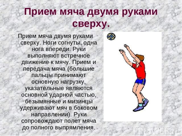 Прием мяча двумя руками сверху. Прием мяча двумя руками сверху. Ноги согнуты, одна нога впереди. Руки выполняют встречное движение к мячу. Прием и передача мяча (большие пальцы принимают основную нагрузку, указательные являются основной ударной част…