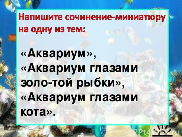 «Аквариум», «Аквариум глазами золо-той рыбки», «Аквариум глазами кота».