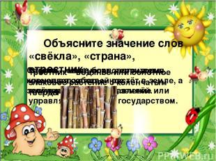 Объясните значение слов «свёкла», «страна», «тростник». Свёкла – овощ бордового