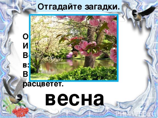 Отгадайте загадки. Она приходит с ласкою И со своею сказкою. Волшебной палочкой взмахнёт – В лесу подснежник расцветёт. весна