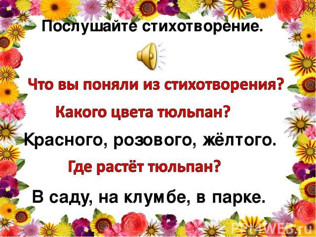 Послушайте стихотворение. Красного, розового, жёлтого. В саду, на клумбе, в парке.