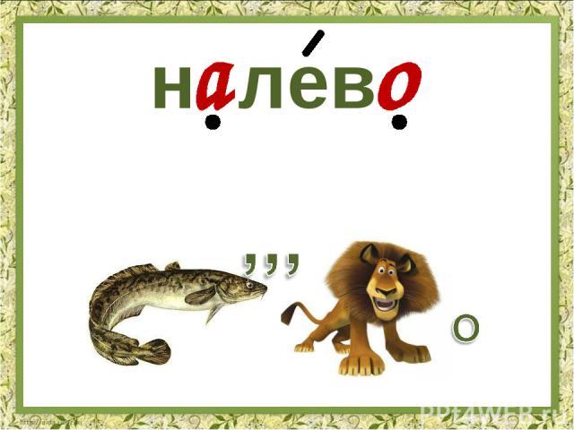 н лев
