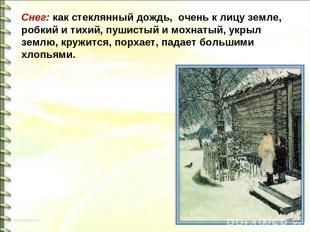 Снег: как стеклянный дождь, очень к лицу земле, робкий и тихий, пушистый и мохна