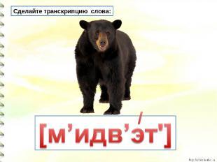 Сделайте транскрипцию слова: