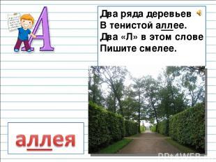 Два ряда деревьев В тенистой аллее. Два «Л» в этом слове Пишите смелее.