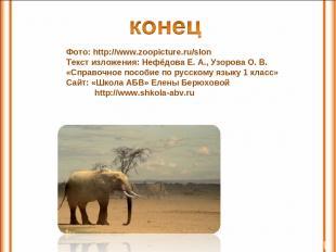 Фото: http://www.zoopicture.ru/slon Текст изложения: Нефёдова Е. А., Узорова О.