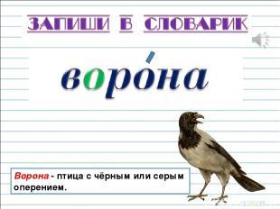 Ворона - птица с чёрным или серым оперением.