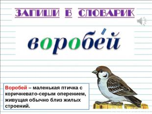 Воробей – маленькая птичка с коричневато-серым оперением, живущая обычно близ жи