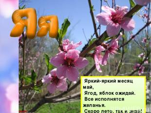 Яркий-яркий месяц май, Ягод, яблок ожидай. Все исполнятся желанья. Скоро лето, т