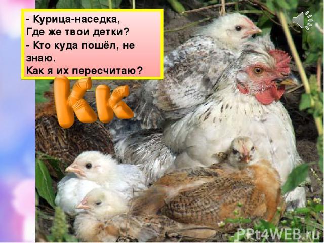 - Курица-наседка, Где же твои детки? - Кто куда пошёл, не знаю. Как я их пересчитаю?