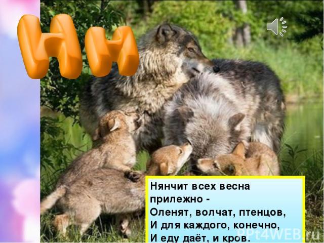 Нянчит всех весна прилежно - Оленят, волчат, птенцов, И для каждого, конечно, И еду даёт, и кров.