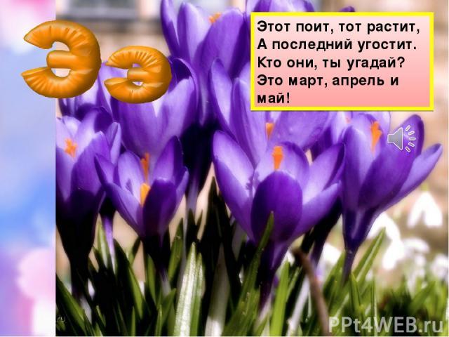 Этот поит, тот растит, А последний угостит. Кто они, ты угадай? Это март, апрель и май!
