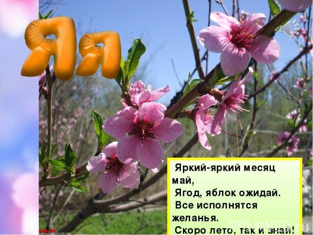 Яркий-яркий месяц май, Ягод, яблок ожидай. Все исполнятся желанья. Скоро лето, так и знай!