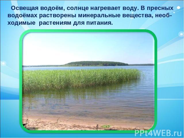 Освещая водоём, солнце нагревает воду. В пресных водоёмах растворены минеральные вещества, необ- ходимые растениям для питания.