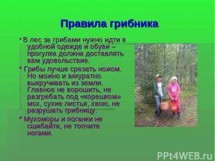 Правила грибника * В лес за грибами нужно идти в удобной одежде и обуви – прогул