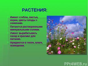 РАСТЕНИЯ: Имеют стебли, листья, корни, цветы плоды с семенами. Питаются растворе