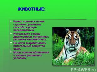 ЖИВОТНЫЕ: Имеют конечности или строение организма, способствующее передвижению.