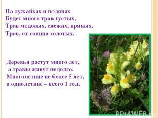 На лужайках и полянах Будет много трав густых, Трав медовых, свежих, пряных, Тра