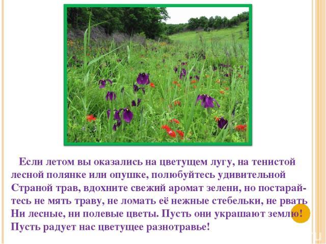 Если летом вы оказались на цветущем лугу, на тенистой лесной полянке или опушке, полюбуйтесь удивительной Страной трав, вдохните свежий аромат зелени, но постарай- тесь не мять траву, не ломать её нежные стебельки, не рвать Ни лесные, ни полевые цве…