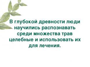 В глубокой древности люди научились распознавать среди множества трав целебные и